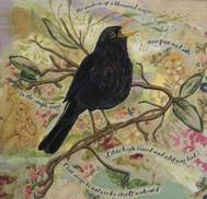Blackbird Sings by Chloe Morter Design