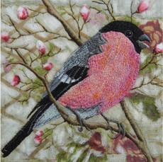 Bullfinch Greetings Card by Chloe Morter Design