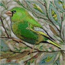 Greenfinch Greetings Card by Chloe Morter Design