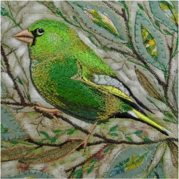 Greenfinch Greetings Card by Chloe Morter Design
