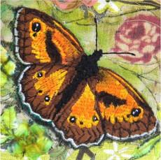 Gatekeeper Butterfly Greetings Card by Chloe Morter Design