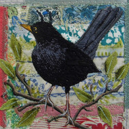 Blackbird (2019) by Chloe Morter Design