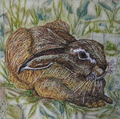 Hare passive - Chloe Morter.jpg
