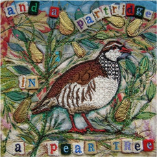 Partridge Xmas Greetings Card by Chloe Morter Design