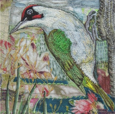 Green Woodpecker Greetings Card by Chloe Morter Design