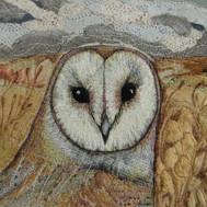 Barn Owl Portrait 2- Chloe Morter.jpg