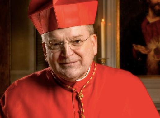 Das ungebildete Gewissen. Wer lebt in Todsünde? Kardinal Burke spricht Klartext