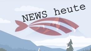 Caritas -Chef fordert öffentliche Entschuldigung von Kurz