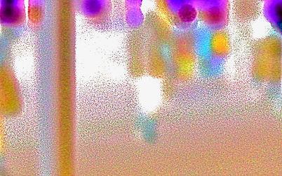 DSC01055_2_2 2 copy 3.jpeg
