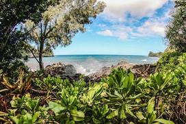 Big Island of Hawai'i Botanica Gardens -