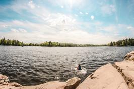 Chute Pond, WI