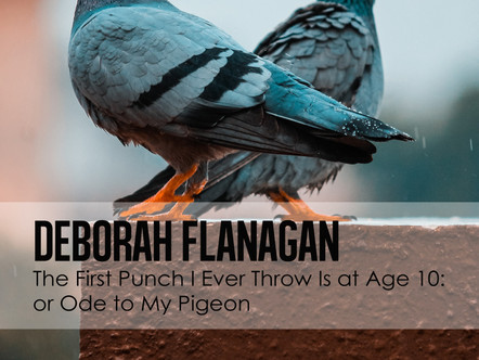 The First Punch I Ever Throw Is at Age 10: or Ode to My Pigeon