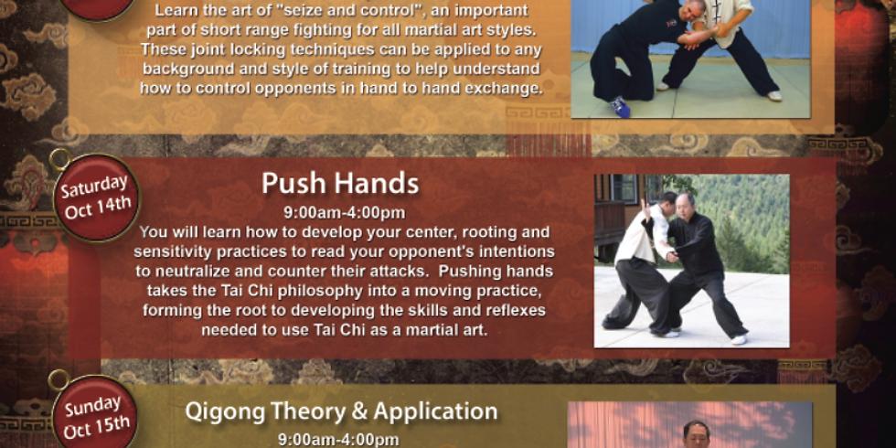 Dr. Yang, Jwing-Ming Seminar