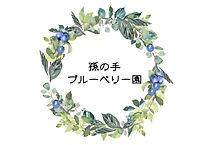 孫の手ブルーベリー園ロゴ.jpg