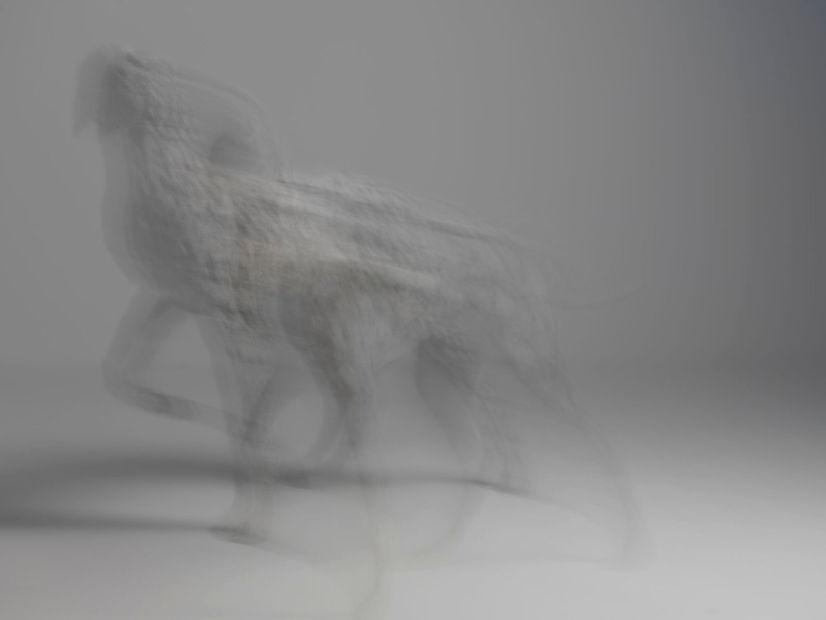 pointer sculpture