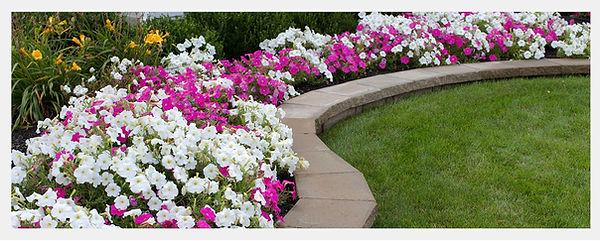 retaining wall flower bed.jpg