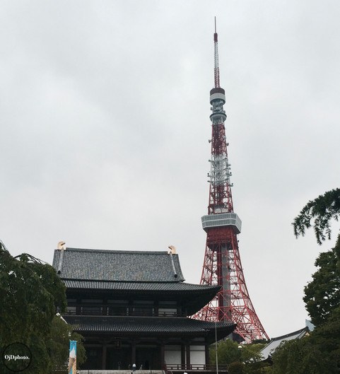 TOKYO TOWER x ZOJOJI TEMPLE