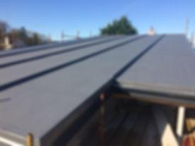RoofRoof - Copy.jpg