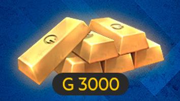 3000 ГОЛДЫ