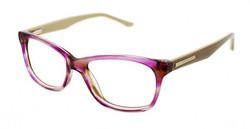 BCBG Glasses
