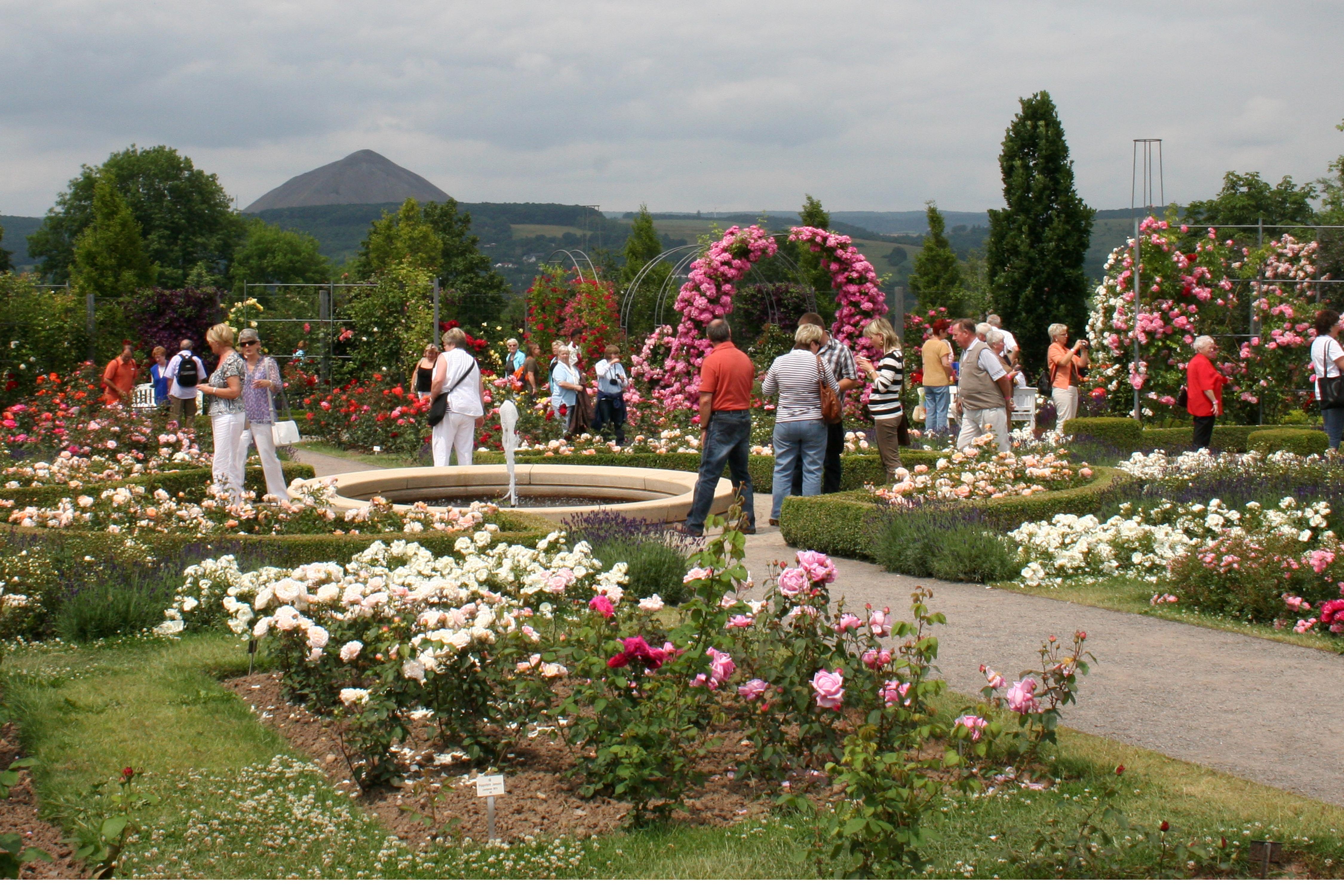 Europa-Rosarium Sangerhausen
