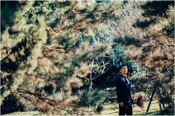 黑森林 / 花卉試驗中心 / 華山藝文特區 / 寵物寫真 / 柴犬 / 香榭里攝影棚 /  / 居家風 / 素人寫真