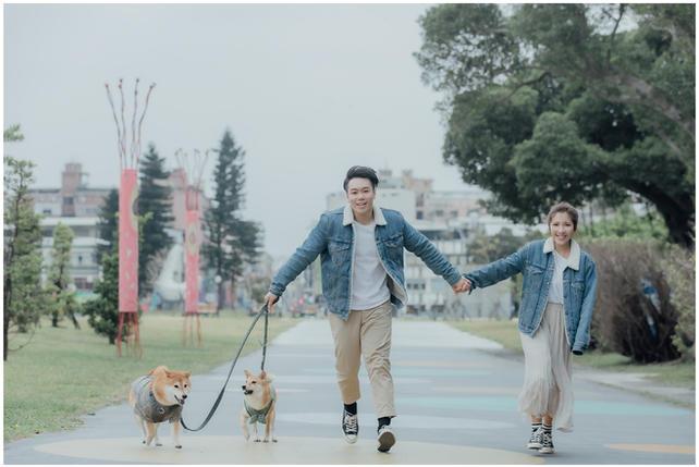 徵惠 / 花卉試驗中心 / 新生公園 / 寵物寫真 / 柴犬 / 自然捲攝影棚 / 素人寫真