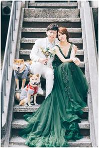 香吟 /  花卉試驗中心 / 華山藝文特區 / 寵物寫真 / 柴犬 / 自然捲攝影棚 / 素人寫真