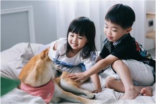 曉玲 / 親子寫真 / 全家福 / 寶寶寫真 / 台北板橋攝影