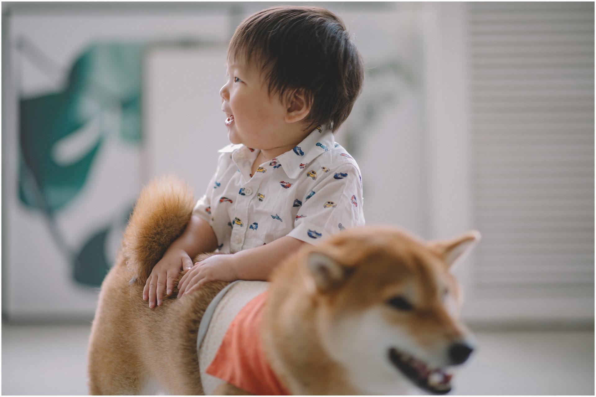親子寫真 / 生日寫真 / 寵物寫真 / 寶寶寫真 / 全家福 / 素人寫真