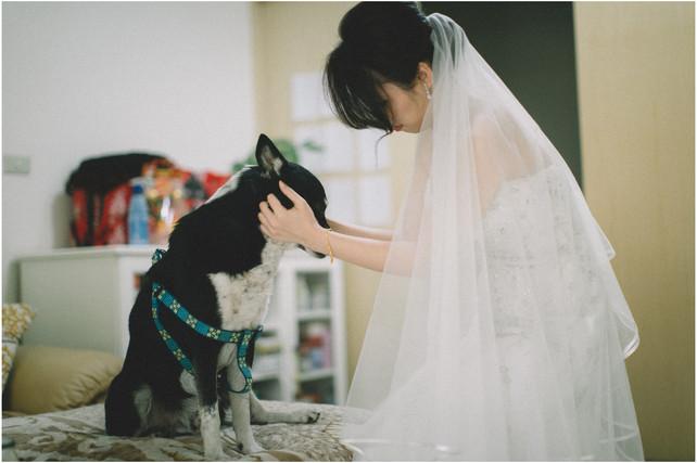 力文 / 婚禮紀錄 / 平面攝影 / 類婚紗
