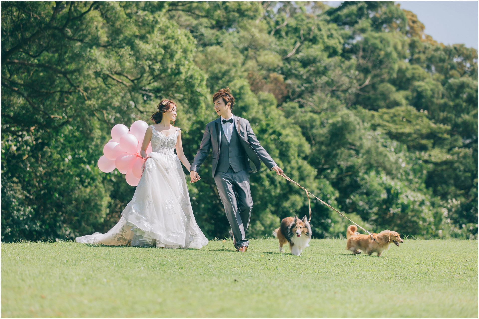 砲台公園  / 黑森林 / 沙崙海邊 / 寵物婚紗 / 自然捲棚拍 / 素人寫真