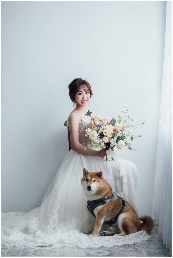 郁婷 / 寵物寫真 / 柴犬 / 自然捲攝影棚 / 素人寫真
