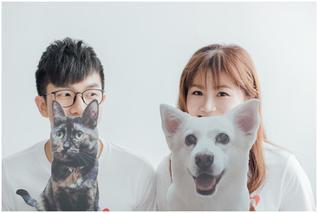 思瑜 / 新生公園 / 林安泰 / 寵物寫真 / 柴犬 / 自然捲攝影棚 / 素人寫真