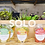 Thumbnail: Solo Box (pack 3 smoothies)