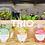 Thumbnail: Trio Box (9 smoothies)