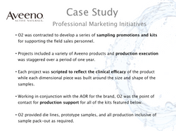 Professional Marketing Case Study
