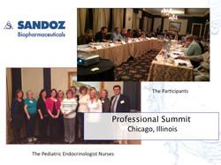 Professional Summit