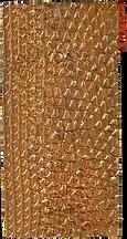 lizard cast impression
