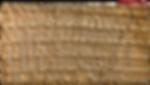 desert bark cast impression