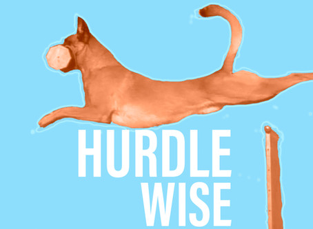 The Knowledge of NOT TOUCHING: Creating Clarity In Your Hurdle