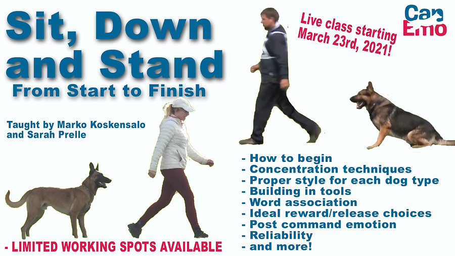 SitDownandStand.jpg