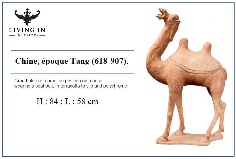 000986-1151 TANG CAMEL