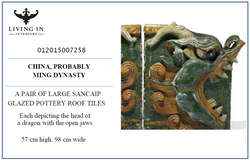 012015007258 MING DRAGON ROOF