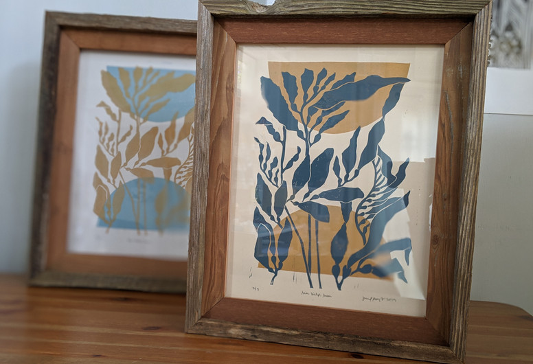 """Sea Kelp and Sun"""