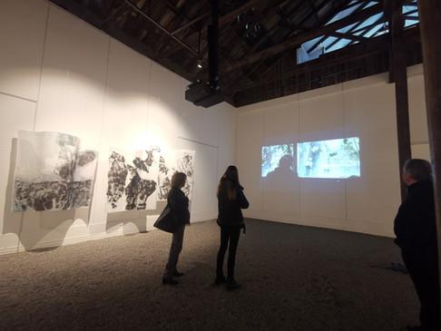 Exhibition Tras Pasos