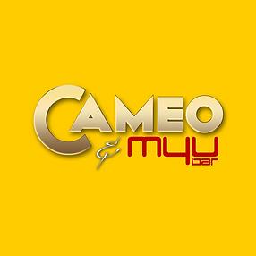Cameo - Yellow Box.png