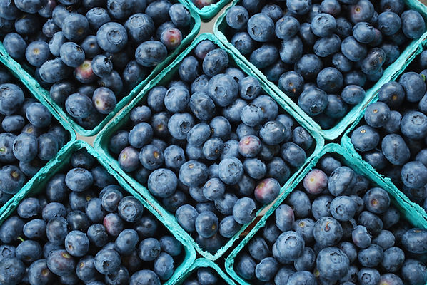 Blueberry Pints.JPG