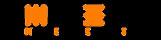 MSCS EDV-Dienstleistungen und Handel