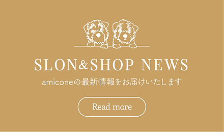 amicone_news-2_banner01.png